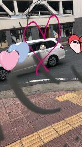 🚗💨<ウッヒョオオオアアア!!!